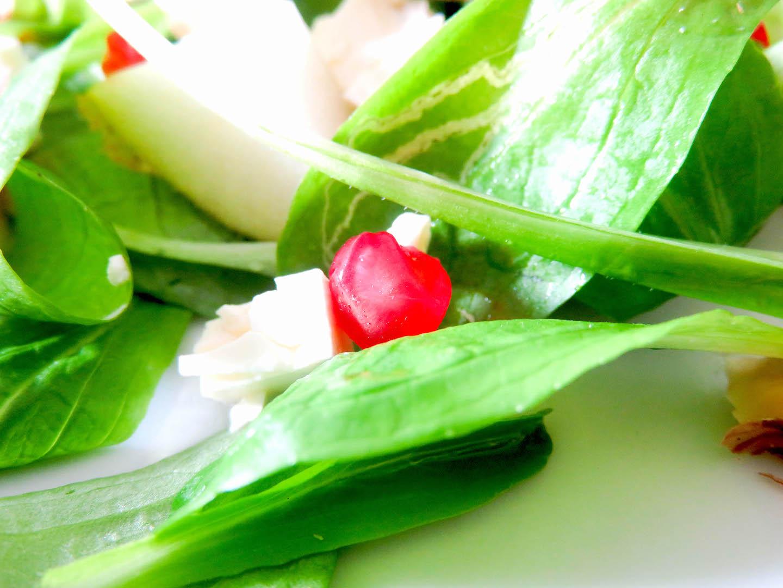 Herbst-salat
